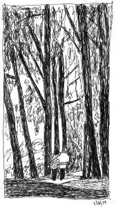 terryhallarts-Sketch_Woods_Walk