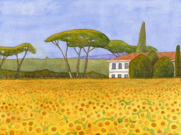 Sunflower Field and Villa