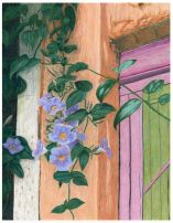 Thunbergia at the Door