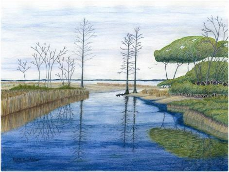 Terry Hall Arts - Swamp at Chippokes