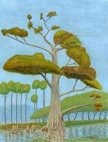 Terry Hall Arts - Cypress at Gordon Creek